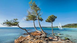 Segelboot in der Bucht von Palombaggia