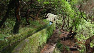 EIn Wanderweg auf Madeira