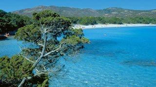 Grüne Natur und blaues Meer in idyllischer korsischen Badebucht