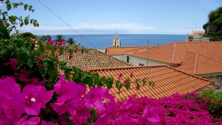 Blick über die Dächer Madeiras