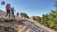 Wandergruppe spaziert über Stock und Stein