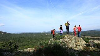 Eine Gruppe von Wanderern genießt die Aussicht und grüne Natur